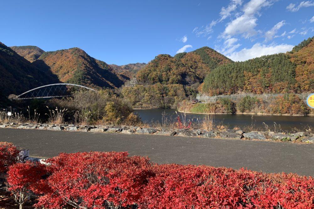 みずがき湖 紅葉