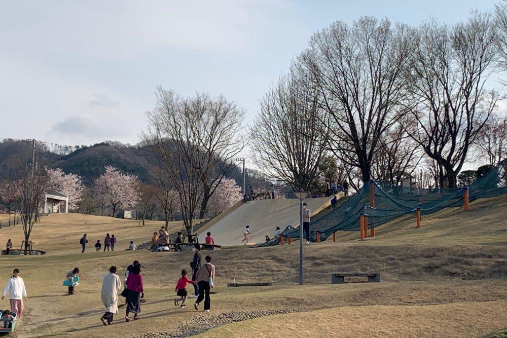 八代ふるさと公園 遊具
