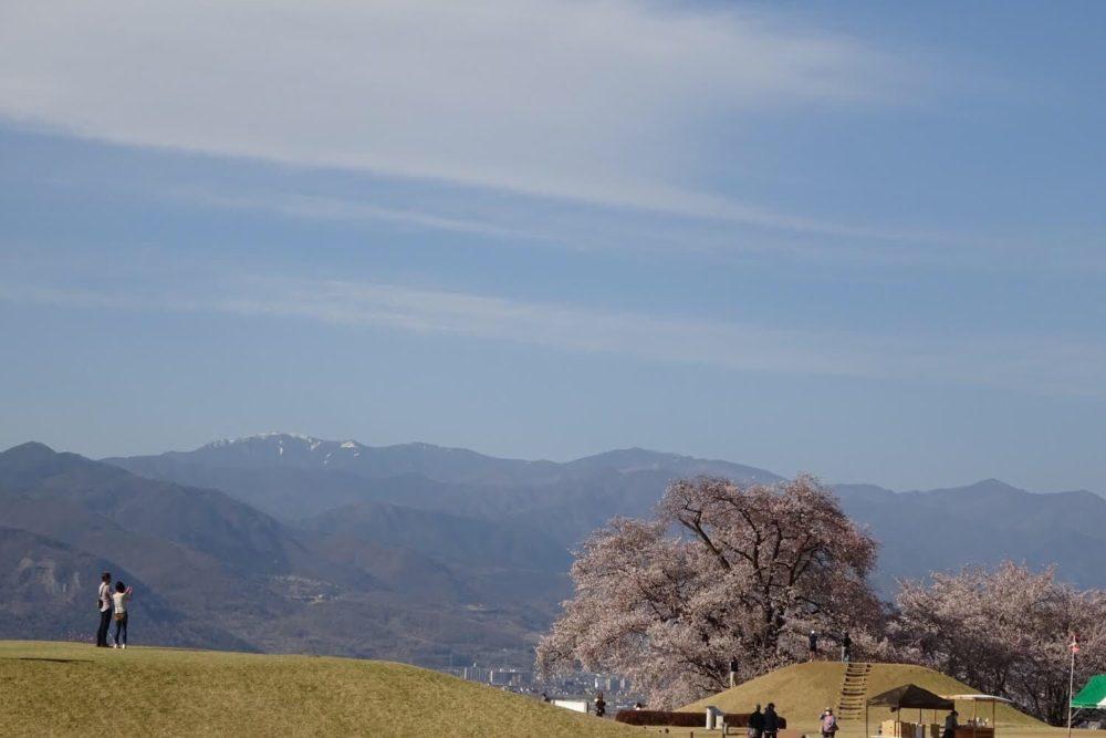 八代の桜 古墳